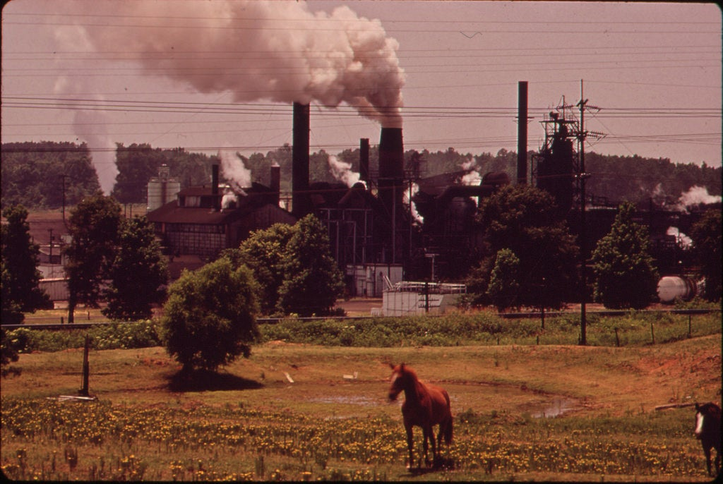 horse in front of chemical company