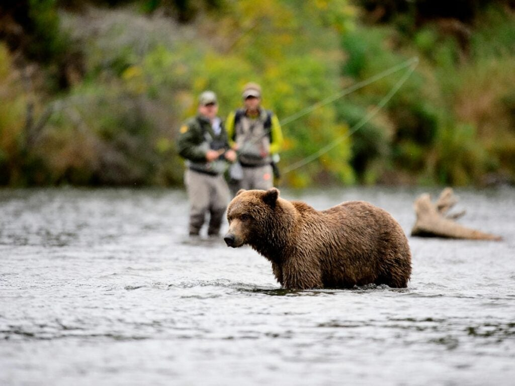 Fishermen stand together when a bear approaches.