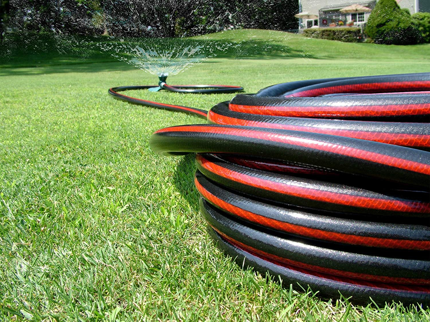 black and red garden hose attached to sprinkler in the yard