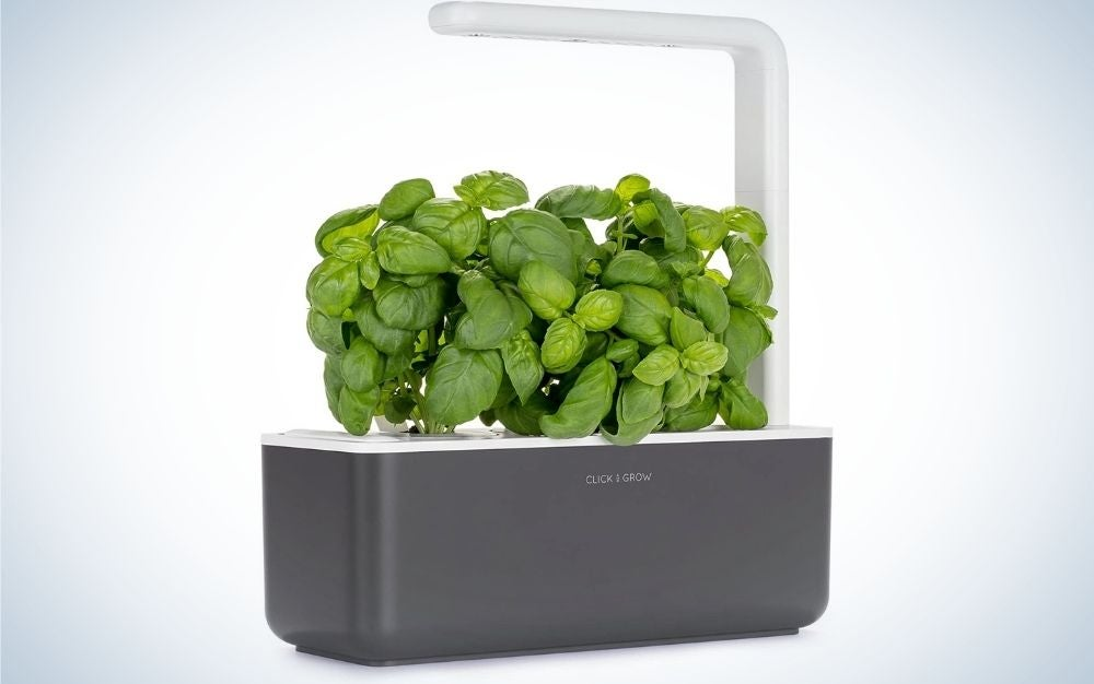 The Click and Grow Smart Herb Garden is the best hydroponic.