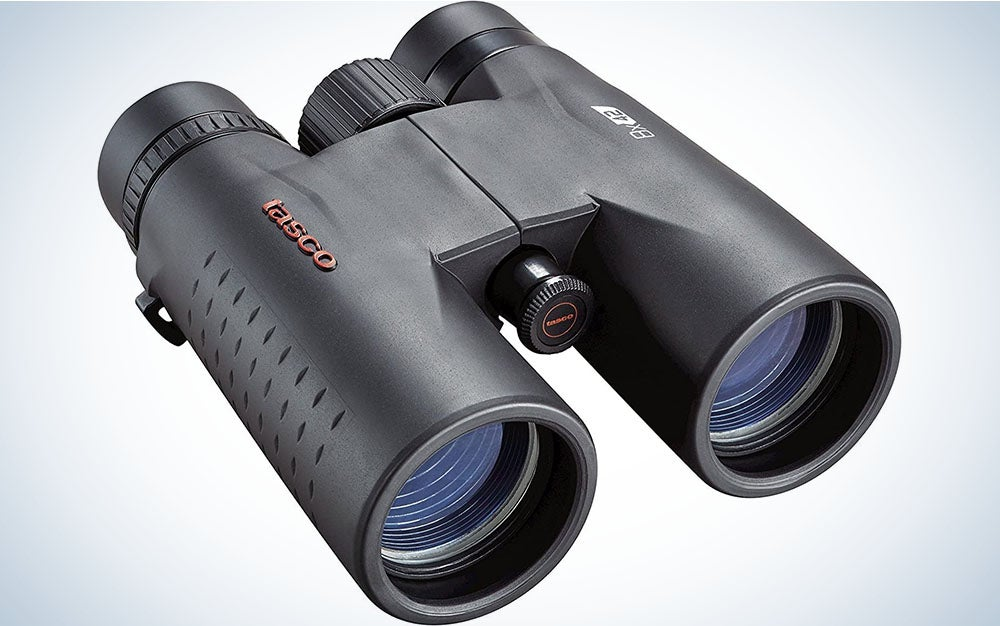 The Tasco Roof Prism Binoculars are the best value