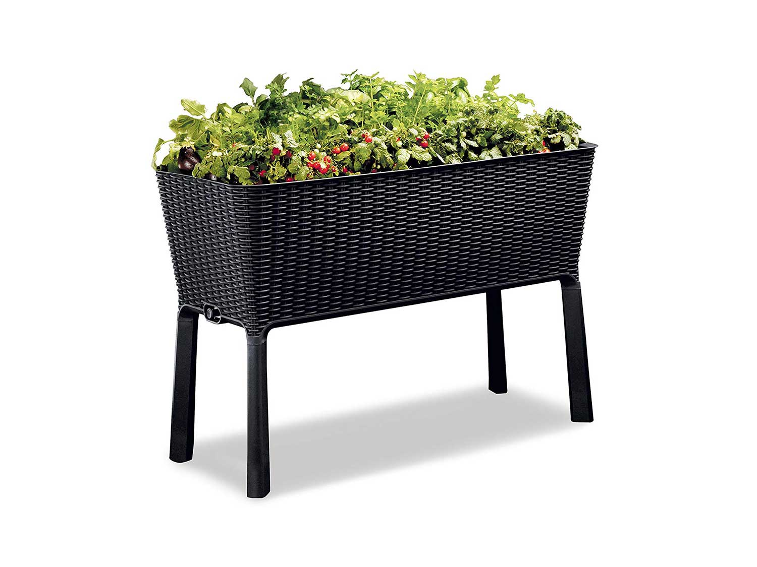 Keter Easy Grow 31.7 Gallon Raised Garden Bed with Self Watering Planter Box and Drainage Plug