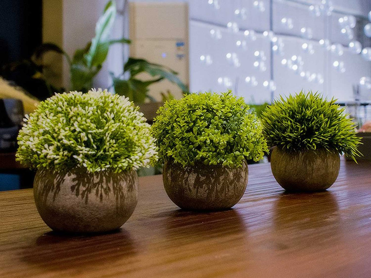 Fake plants sitting on counter in home.