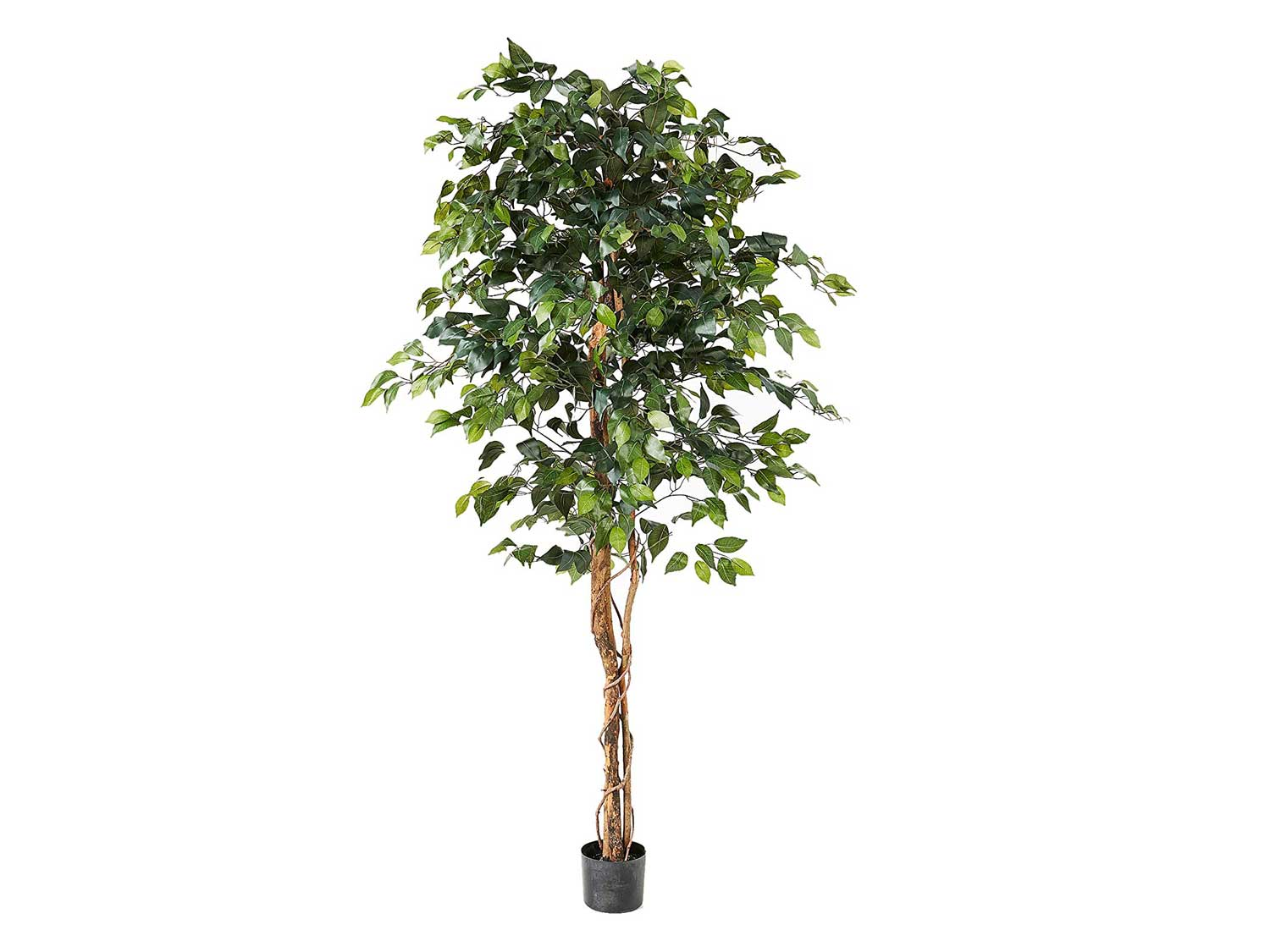 Nearly Natural 6ft. Ficus Artificial Trees