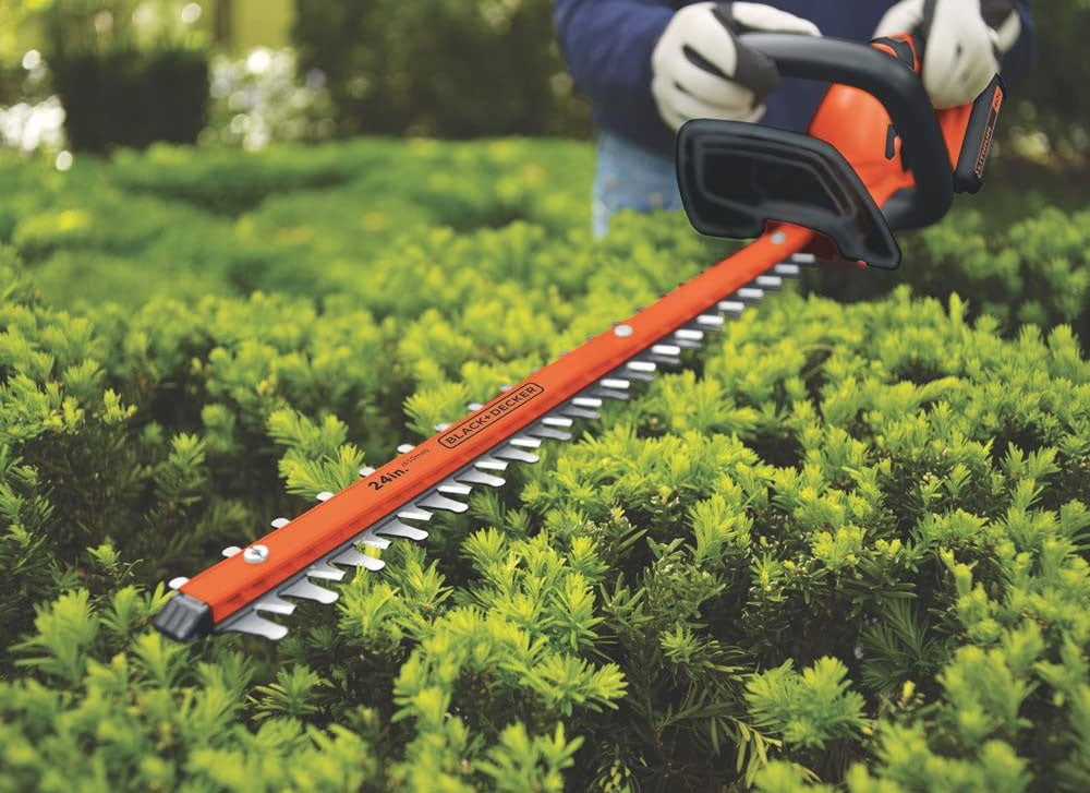 Person trimming hedges
