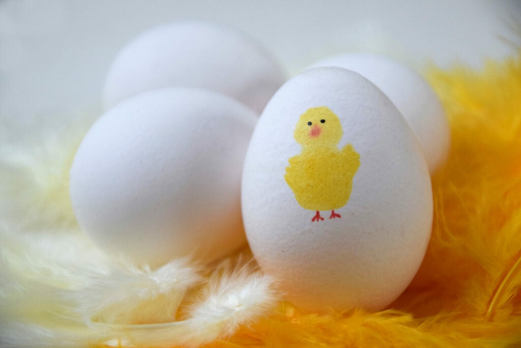 Four white eggs on yellow and white feathers. One egg has a cute yellow Easter chicken painted on it.