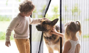 Best Magnetic Screen Doors To Keep Out Bugs And Let Fresh Air In