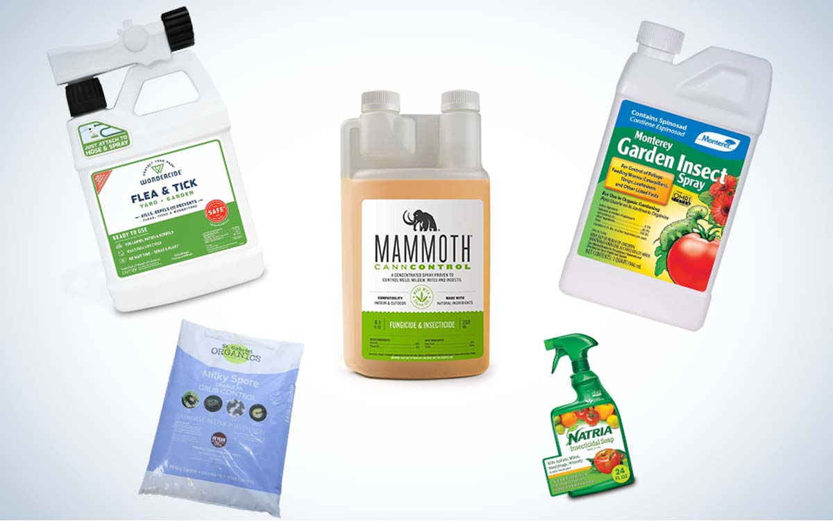 The best organic pesticides of 2021.