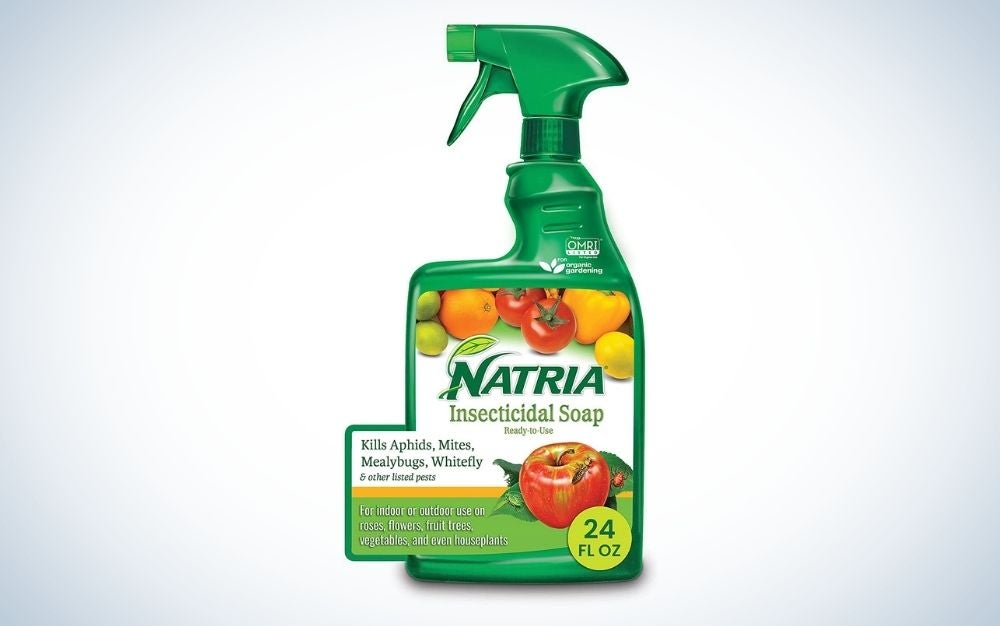 The Natria 706230a Insecticidal Soap is one of the best organic pesticides for value.