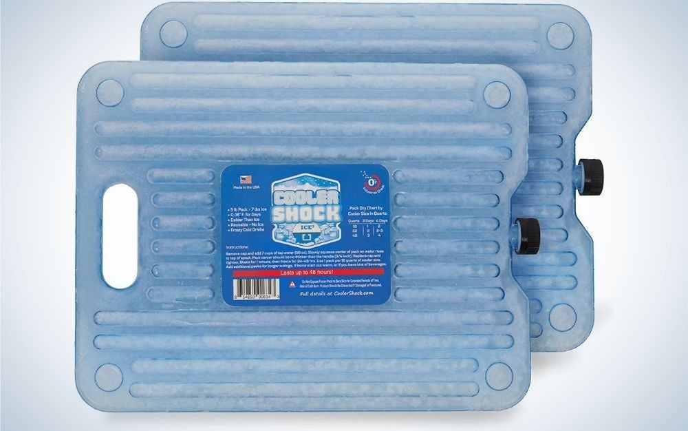Cooler Shock Ice Packs are the best freeze.