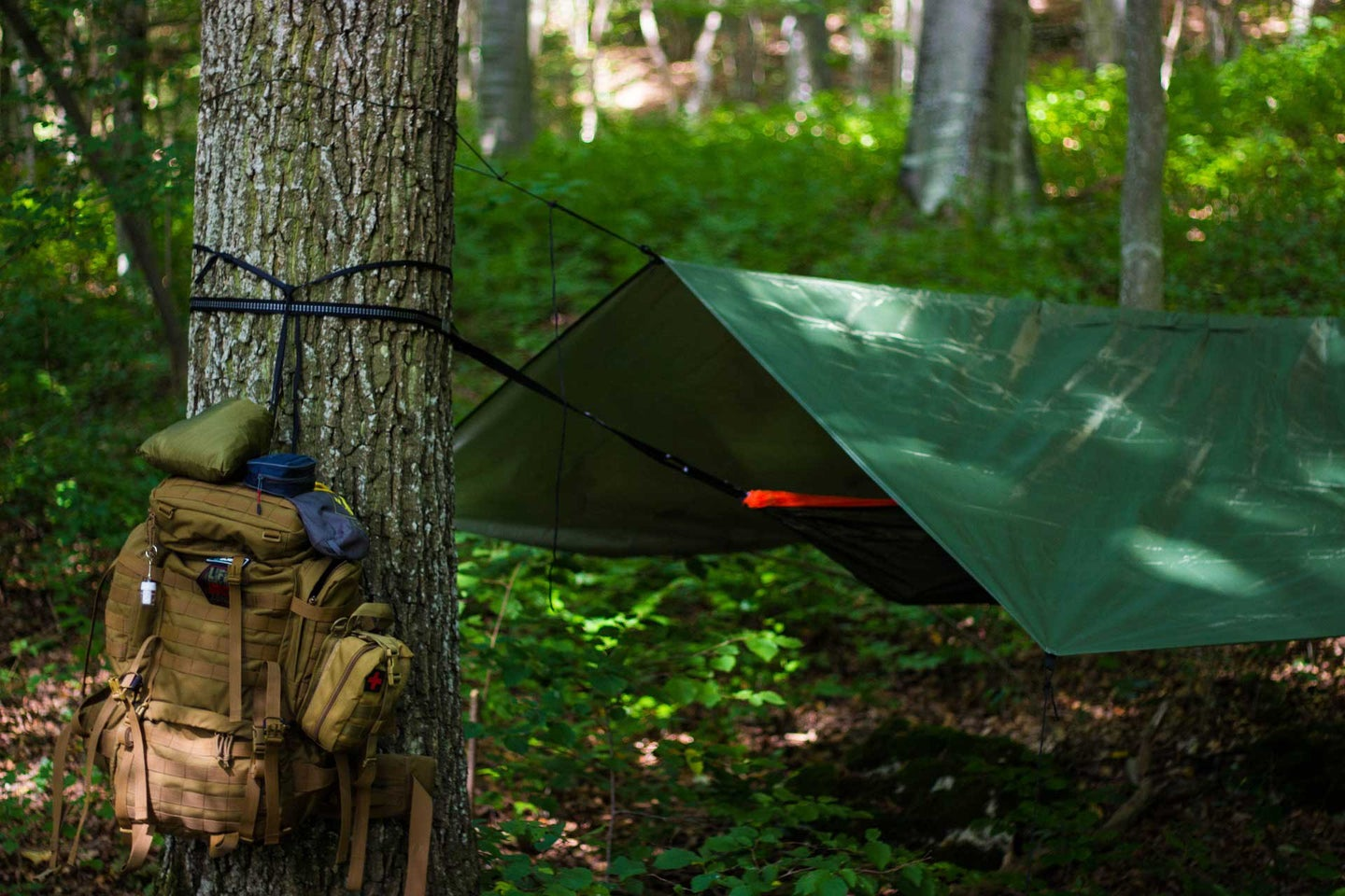 Tarp covering a campsite in the woods