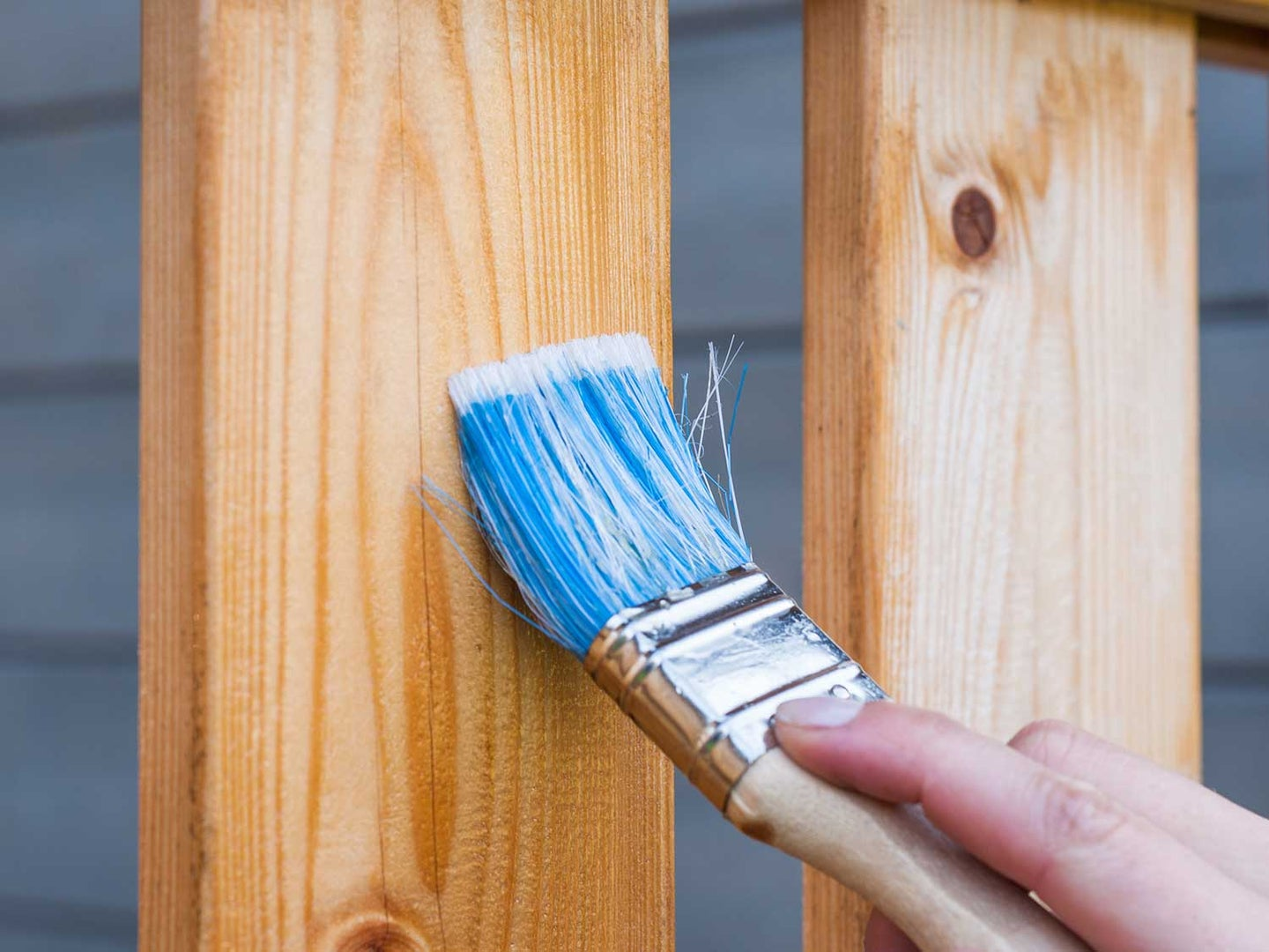 Painting fence with paintbrush.