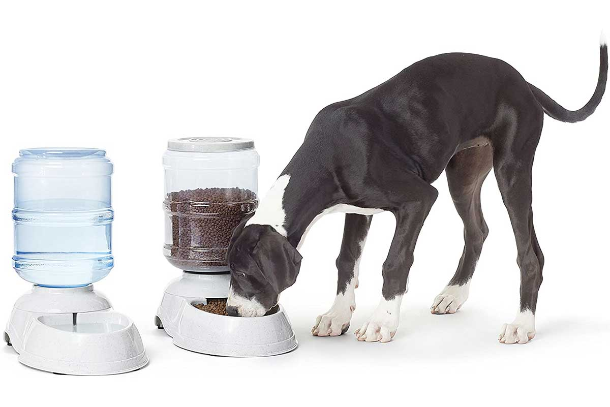 Gravity Pet Food Feeder and Water Dispensers
