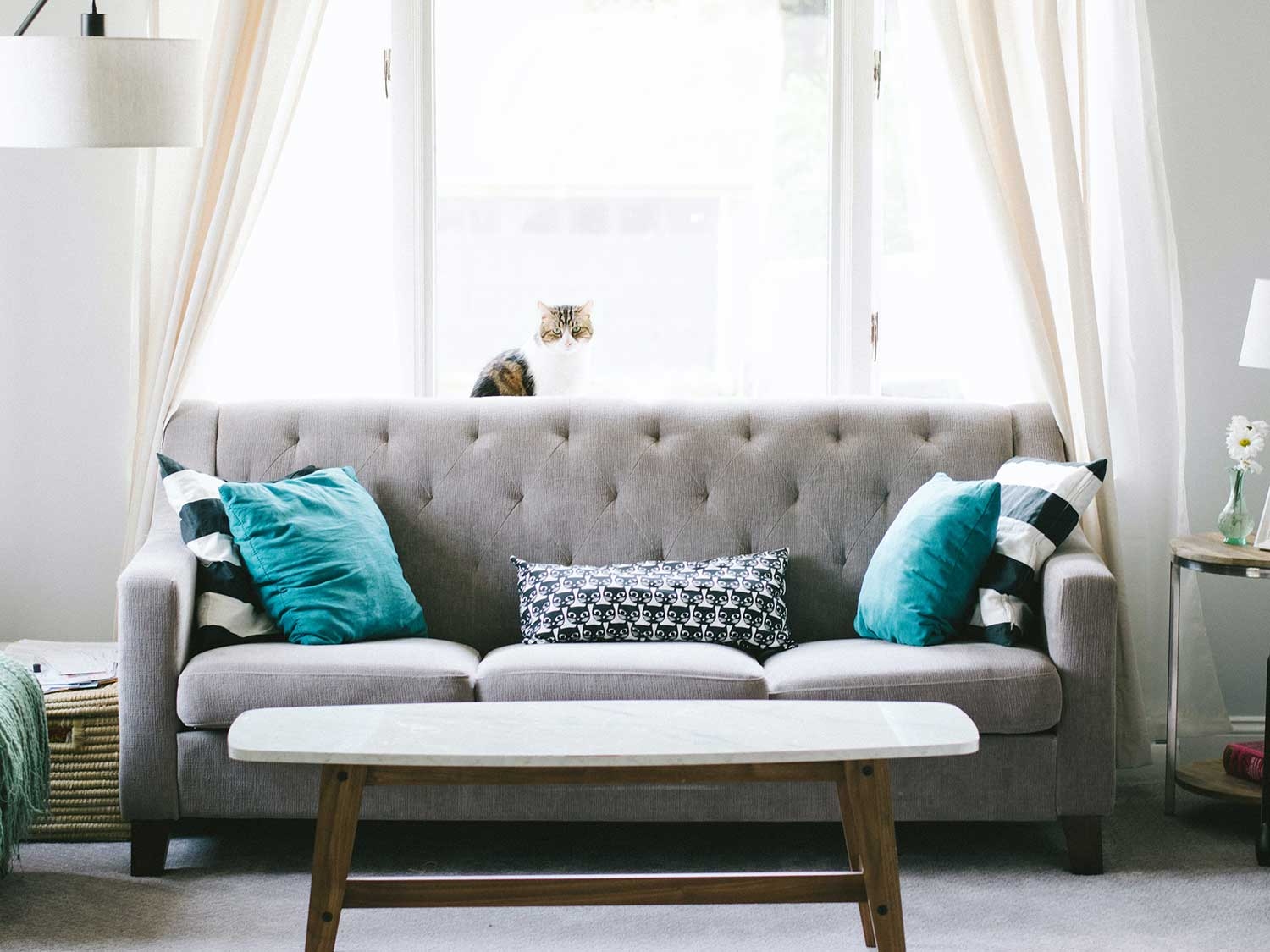 Sofa in front of window.