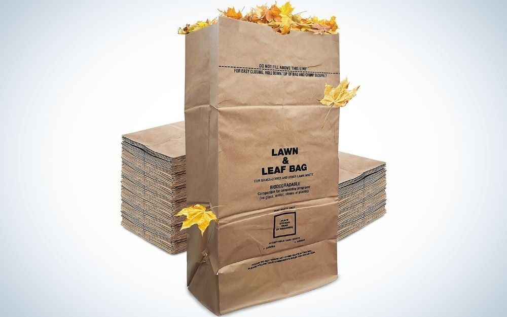 The Stock Your Home Eco-Friendly 30 Gallon Kraft Leaf Bag if the best disposable.