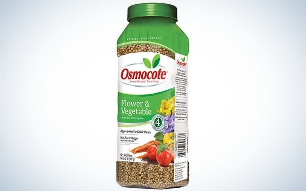 Osmocote Smart-Release Plant Food is the best value.