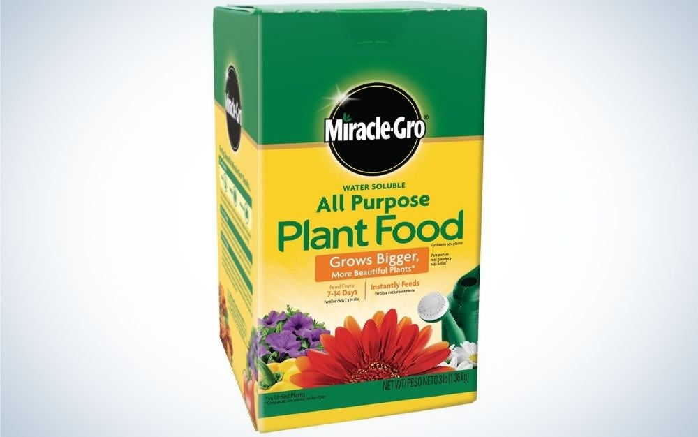 Miracle-Gro 3-Pound Fertilizer is the best plant food overall.