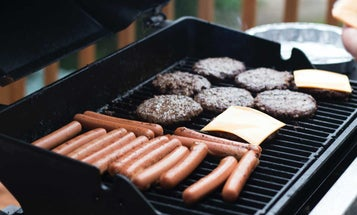 Propane Grills That Quickly Cook Delicious Meals