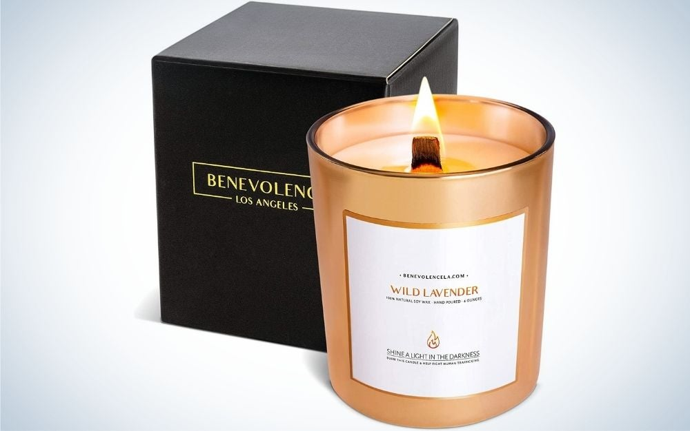 Benevolence Wild Lavender Candles are the best gift option for wooden wick candles.
