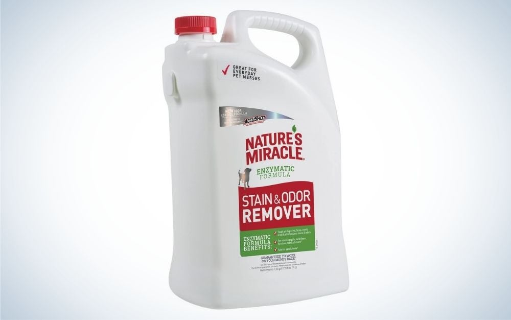 Nature's Miracle Stain & Odor Remover is the best value for pets.