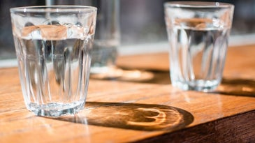 Glasses of water filled from faucet water filter