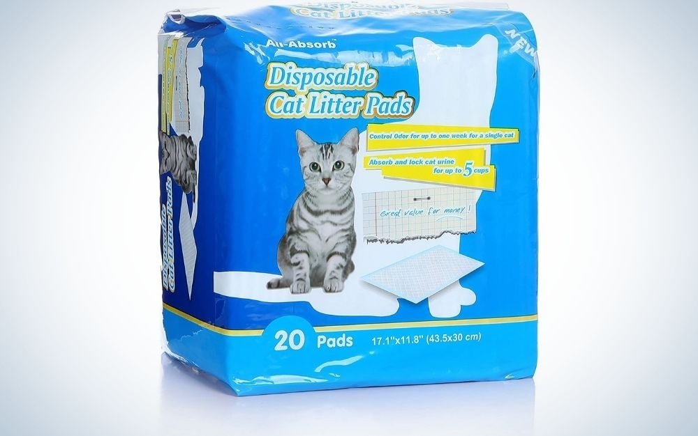 A blue square cat pads with twenty pairs of pads into it and with a cat standing in the picture.