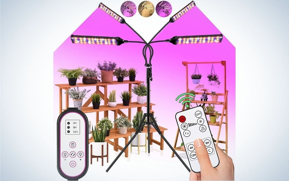 The LECLSTAR LED Grow Light Indoor Plants is the best value.