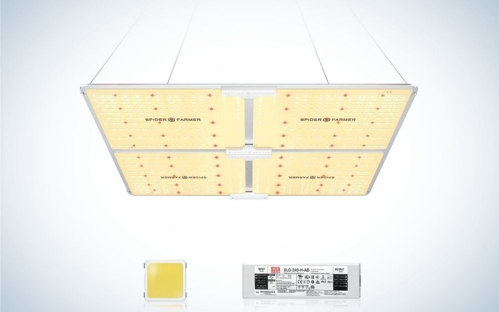 The SPIDER FARMER SF-4000 LED Grow Light is the best overall.