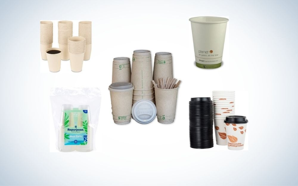 The Best Disposable Cups of 2021