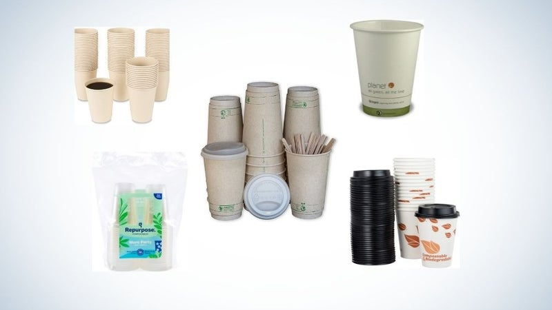 Best Disposable Cups That Won't Hurt The Environment