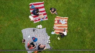 Three pink and light wild pink rugs and people sitting on it picnicking on a green lawn.