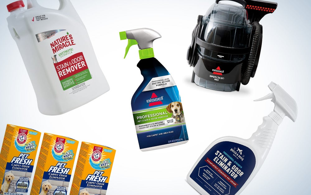 best pet stain and odor removers