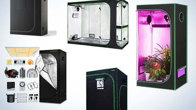 The Best Hydroponic Garden Tents for Optimal Indoor Cultivation
