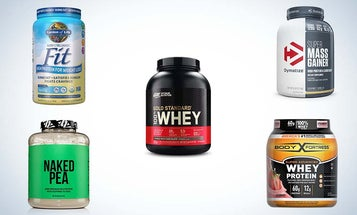 Best Protein Powders to Build and Maintain Muscle