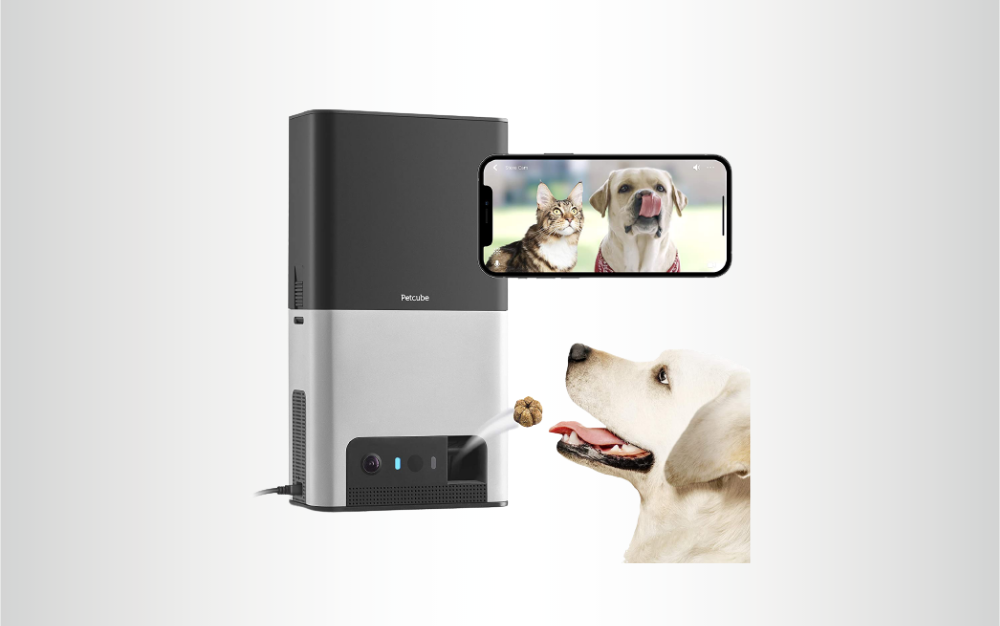 Petcube Bites 2 is the best overall pet camera