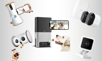 Best Pet Cameras to Spy on Your Pooch